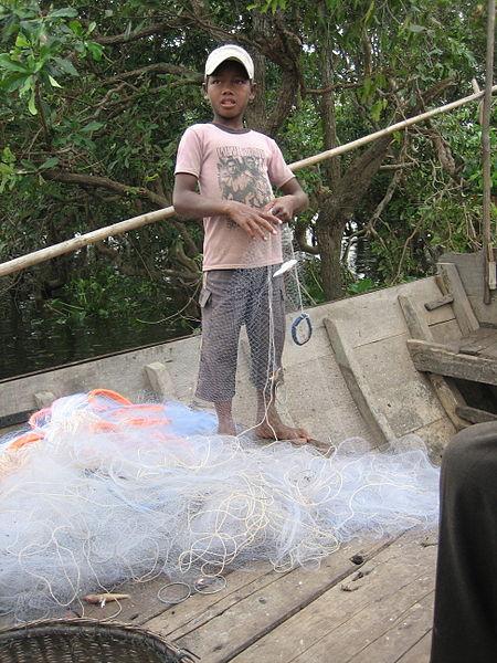Kinderarbeit in der Fischereiindustrie. | Bild (Ausschnitt): © Divya Manian [CC BY 2.0]  - Wikimedia Commons