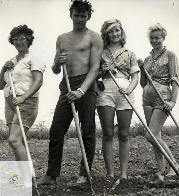 Tabakfarmer in den 60ern: Die romantische Vorstellung vom einfachen Leben im Familienbetrieb entspricht häufig nicht der Realität der USA von heute Tabakfarmer in den 60ern: Die romantische Vorstellung vom einfachen Leben im Familienbetrieb entspricht häufig nicht der Realität der USA von heute | Bild (Ausschnitt): © Elgin County Archives [CC BY-NC-ND 2.0]  - Flickr